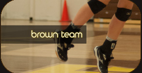 tj volleyball brown team page